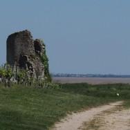 chateau-fort-de-castillon-tour-de-castillon