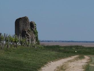 Boucle de la vicomté de Castillon (Saint-Yzan-de-Médoc)