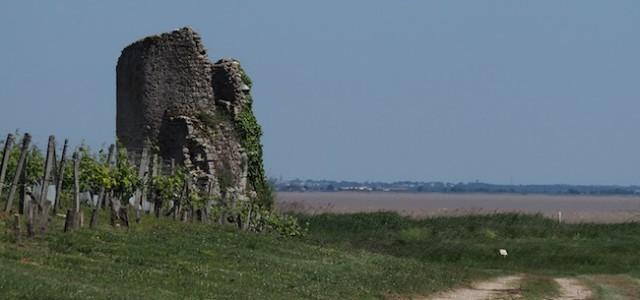 Château Fort de Castillon (Tour de Castillon)