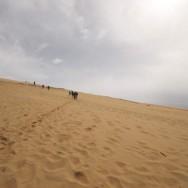 Montée de la Dune côté mer