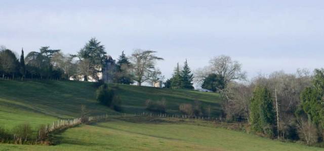 Château Puyguerin