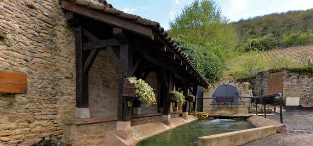 Source et Fontaine du Romanin (Fuissé)